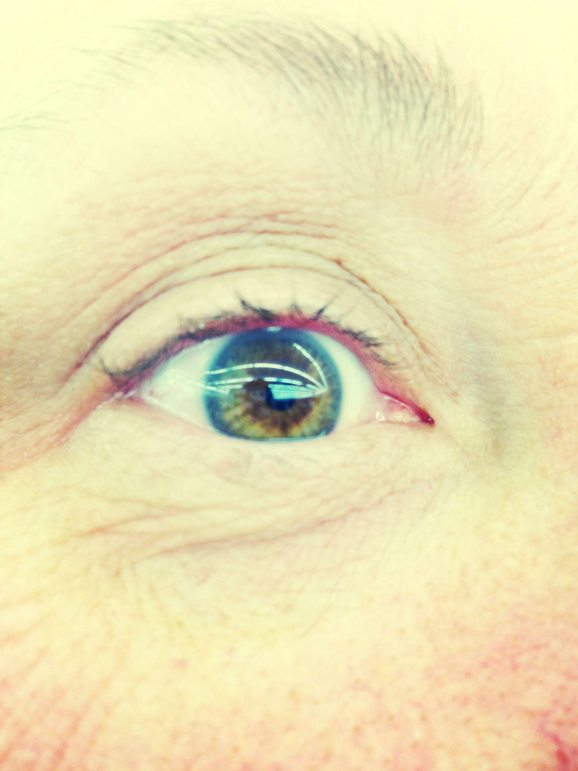human eye, eyelash, close-up, eyesight, part of, sensory perception, portrait, full frame, looking at camera, eyeball, extreme close-up, iris - eye, extreme close up, human skin, unrecognizable person, backgrounds, eyebrow