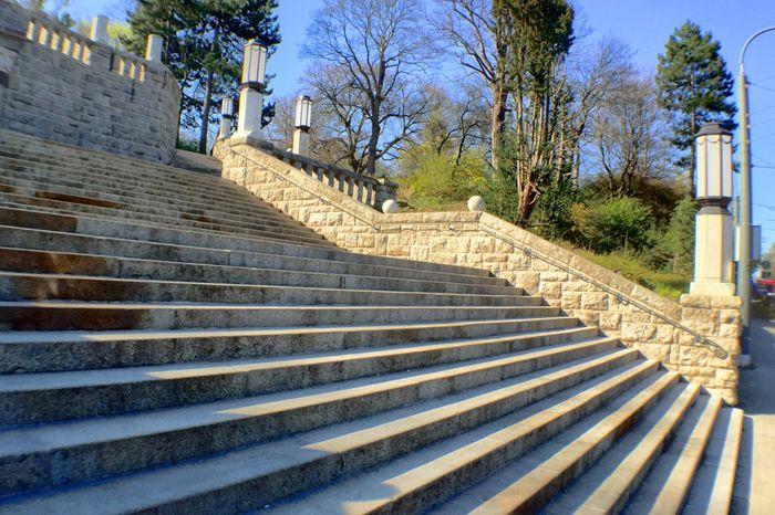 Rekonstruierte Treppenanlage Erfurt Stadtpark