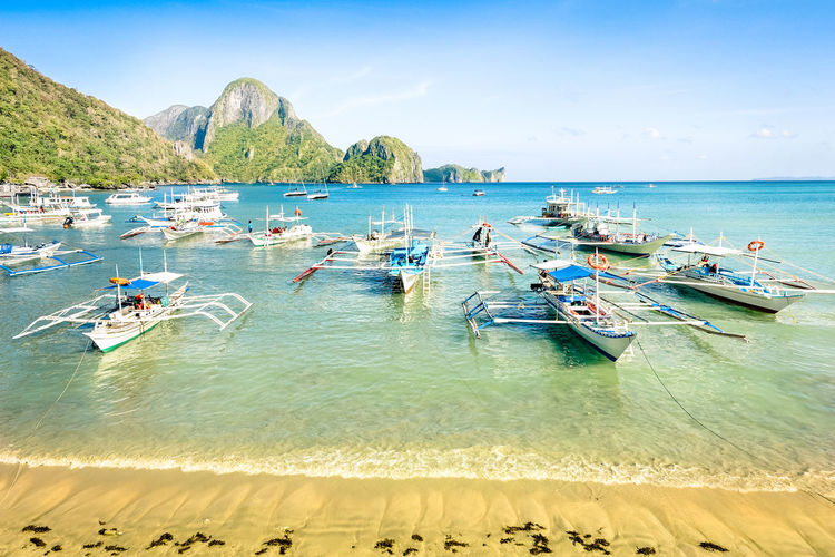 Front beach with longtail boats in El Nido - Beautiful tropical destination in Palawan Philippines - Travel concept in exclusive locations in south east asia - Nature wander trip around the world Asian  Bay Beach Beautiful Blue Boat Coast Day Excursion Destination El Nido Exclusive  Lagoon Landscape Longtail Natural Nature Ocean Outdoor Palawan Panorama People Philippines Resort Scuba Diving Sea Seascape Sky Snorkel Snorkelling Summer Sunny Tourism Tourists Travel Trip Tropics Turquoise Vacation View Visit Wanderlust Water Wonder Yacht Island Hopping Tropical Paradise Longtail Boat Long Tail Boat