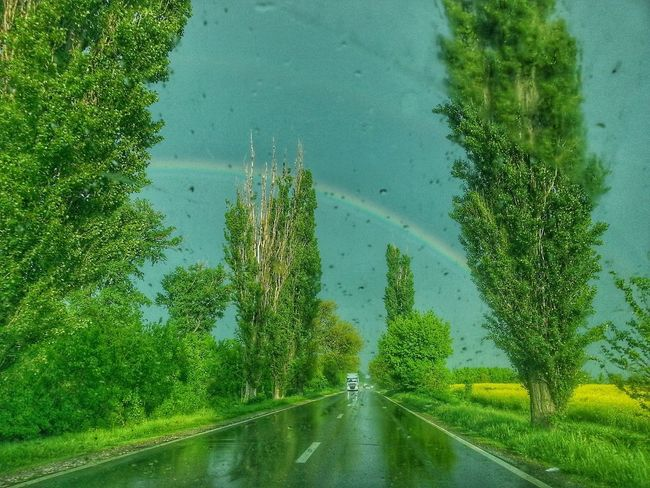 Green Color Nature Beauty In Nature Sky Water Rainbow🌈