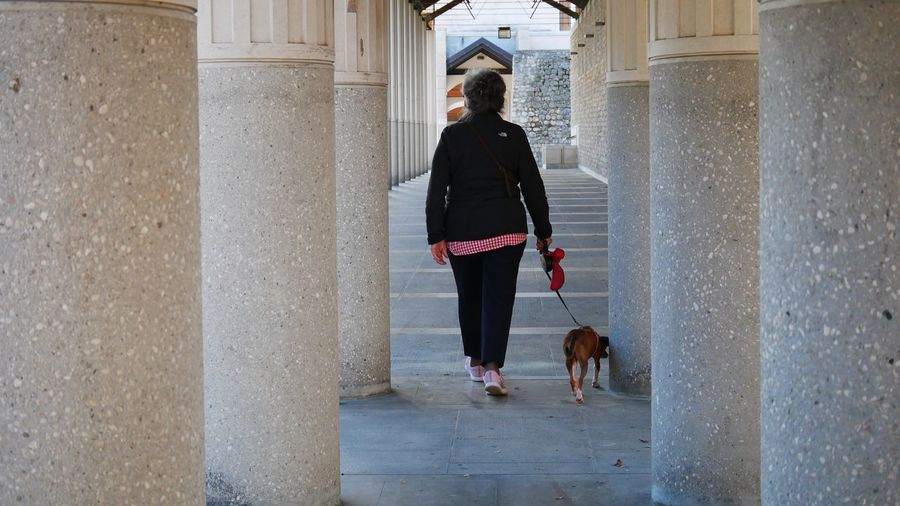 Rear view of woman with dog walking