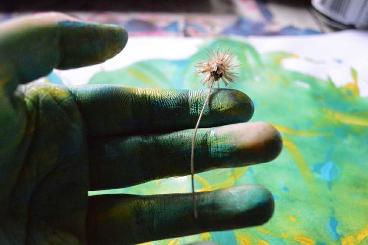 Taking Photos Check This Out Mine Art Flower Nature Phoyography Painting Nikon Green