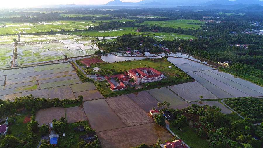 Beautiful and serene morning of village far away from town. Agriculture Agriculture, Farm, Landscape, Field, Plantation, Green, Nature, Aerial, Plant, Rural, View, Pattern, Harvest, Top, Farming, Summer, Land, Grow, Outdoor, Farmland, Background, Agricultural, Environment, Organic, Food, Growth, Aerial View, Rice, Drone, Eart Architecture Beauty In Nature Building Exterior Built Structure Day Field Grass Growth High Angle View Landscape Nature No People Outdoors Plant Rural Scene Scenics Sky Tree