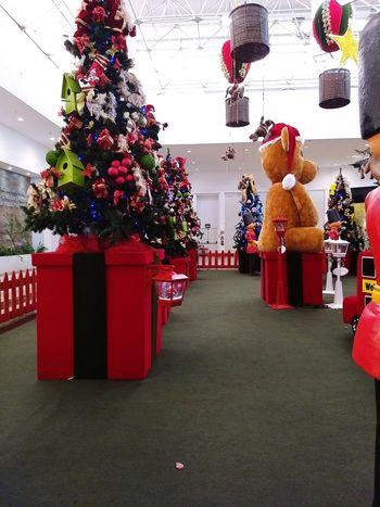 Christmas Christmas Decoration Tree Red Tradition Indoors  No People Day é bom relacionamento em geral sempre focando nos objetivos E O Natal Tá Aí! A Partir De Maintenant Et Pour Moi Lamouest Mort De Publicidade
