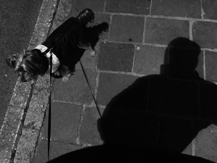 Pets Domestic Animals Real People Shadow Outdoors Dog Blackandwhite Project Autoportrait Self Portrait