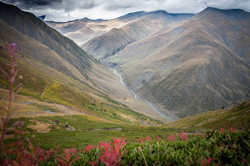 Riding down the valley in Tusheti National Park Mountain Scenics - Nature Beauty In Nature Environment Mountain Range Landscape Tranquil Scene Non-urban Scene Nature Tranquility Cloud - Sky No People Land Day Valley Plant Remote Sky Idyllic Outdoors Mountain Peak Mountain Biking Riding Singletrack