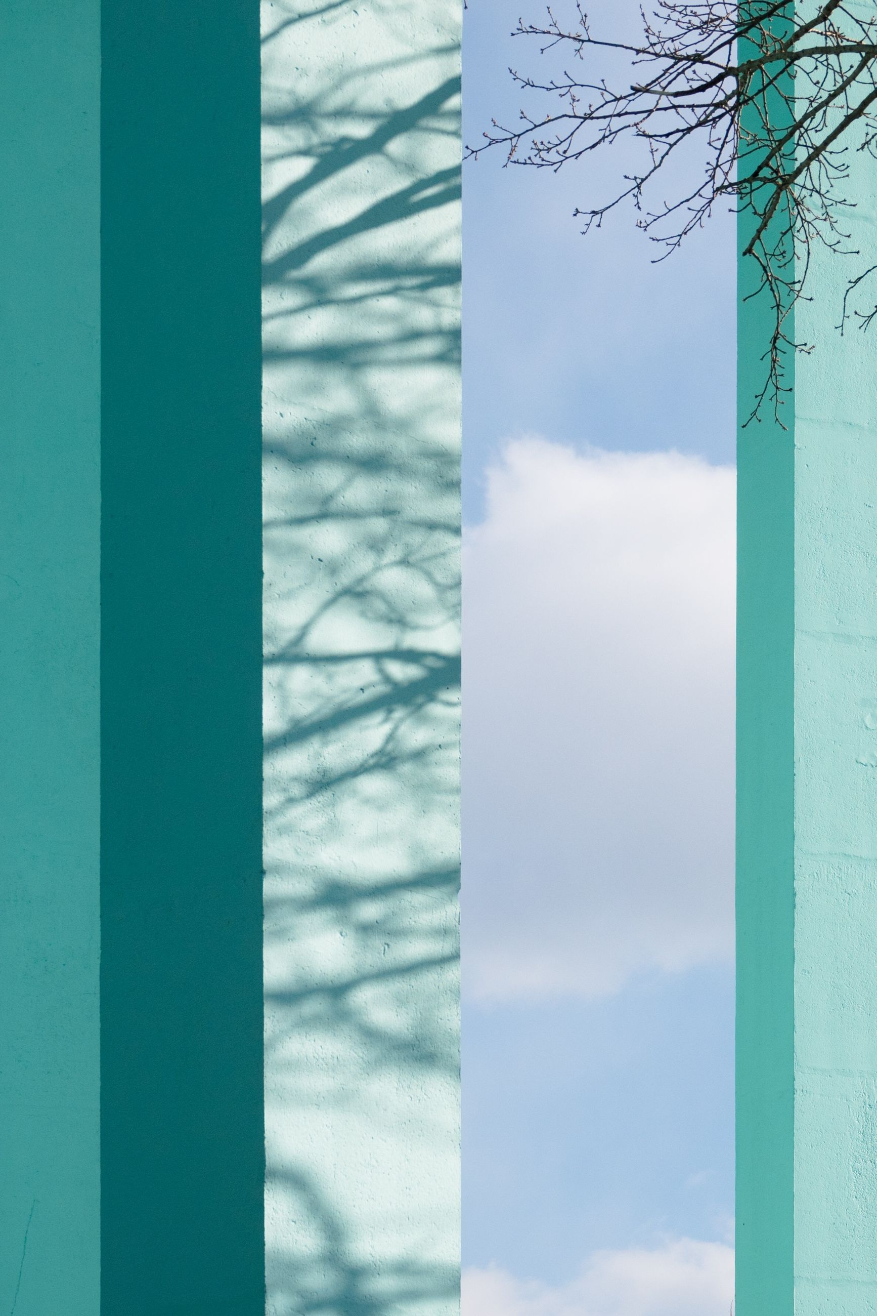 no people, day, architecture, close-up, nature, window, built structure, green color, outdoors, sky, glass - material, pattern, focus on foreground, wall - building feature, tree, full frame, building exterior, transparent, cloud - sky, backgrounds, architectural column, digital composite, turquoise colored