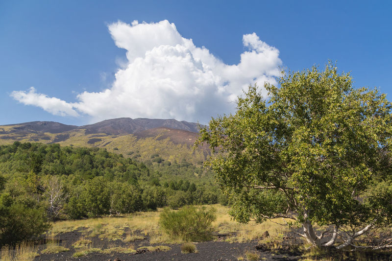 Scenic landscape around active mt. etna volcano, sicily. steam clouds rising up in the blue sky