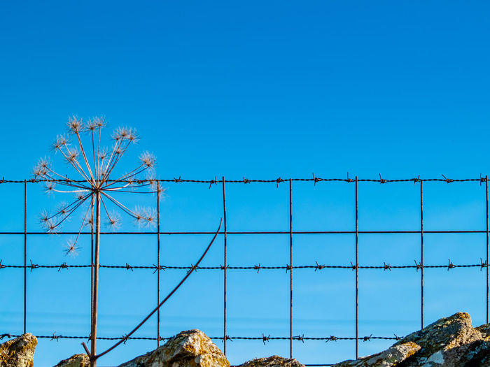 Low angle view of fence against blue sky