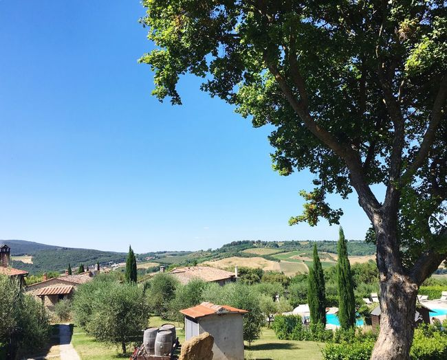 Tuscany Blue Nature Clear Sky Goodtime No People First Eyeem Photo