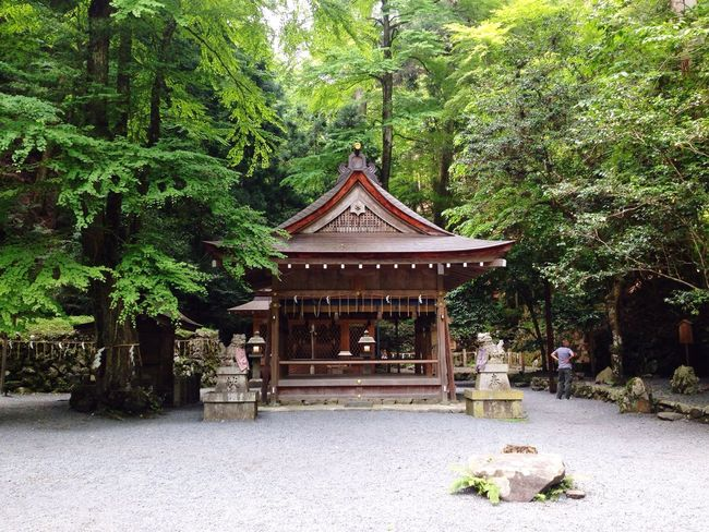 Kyoto Architecture