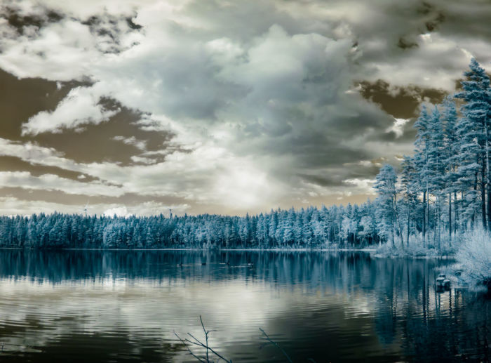 infrared photo of small lake and trees Infrared Beauty In Nature Cloud - Sky Infrared Photography Ir Photography Lake Nature No People Outdoors Reflection Scenics Tranquil Scene Tranquility Tree Water Waterfront