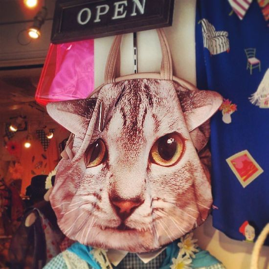 This cat-head bag was the last straw for me, I had to leave this crazy place, hehe Harajuku TakeshitaDori
