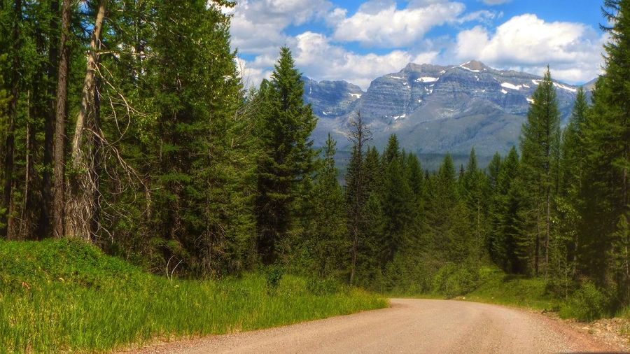 The Path Less Traveled By Pointer Footwear Montana Polebridge Mountains