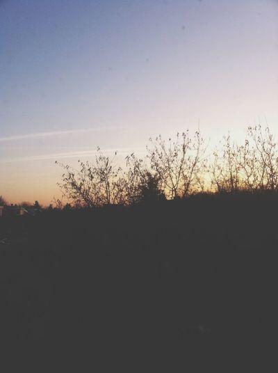 Nice view SkyView Sunset