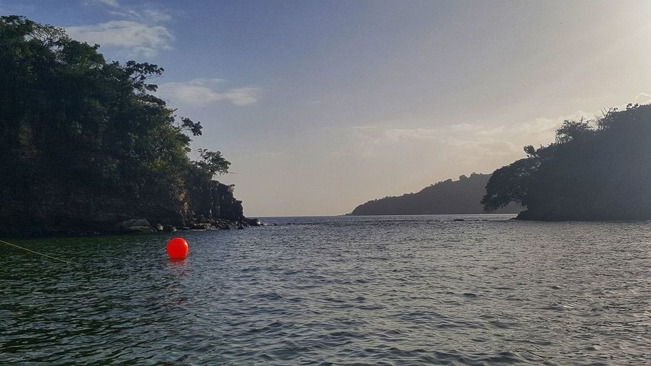 Buoy me Sea Life Misty Mountains In The Distance Trees And Nature Orange Buoy Clouds And Sky Water Reflections Buoy On The Water Mountains Sea Water Tranquility Outdoors Nature Beauty In Nature Day Sky No People Tranquil Scene Scenics
