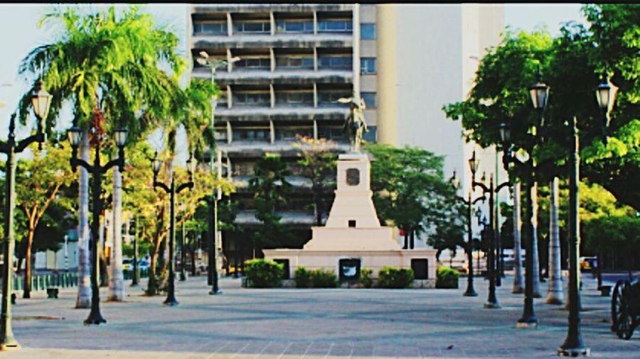 Paseo Bolivar History Culture Barranquilla