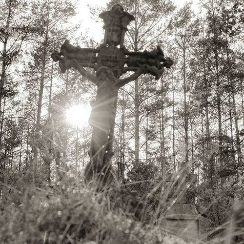 Abandoned graveyard Wroclove Wroclaw Poland Crucifixion Crucifix Cross Abandonedgraveyard