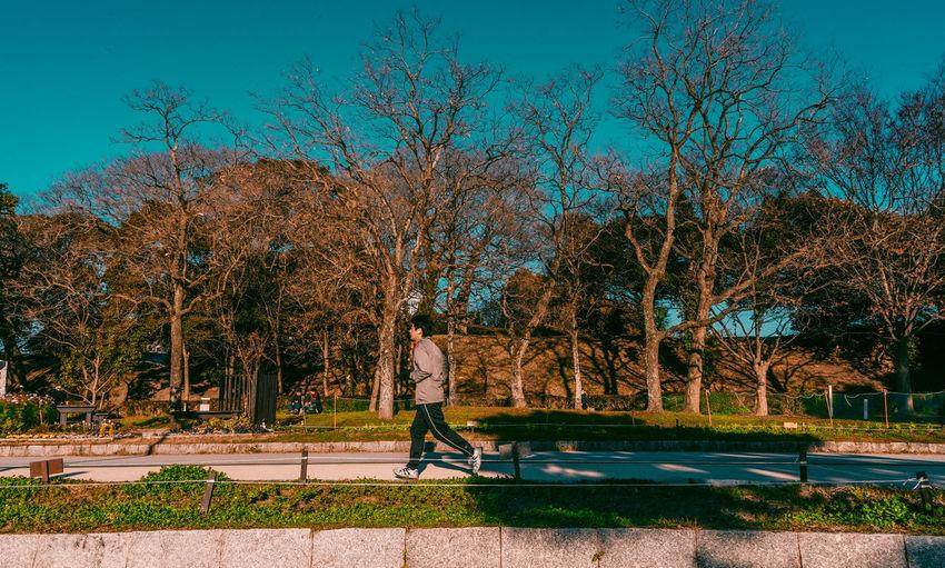 Man walking on footpath in park