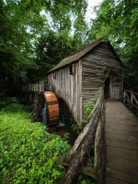 Functioning old Mill along the loop in Cades Cove National Park, near Gatlinburg, Tennessee Oldmill Cadescove Great Smokey Mountain National Park Hiking Adventure Heritage Heritage Park Summer Photography Teampixel Pixelxl2 Moment Moment Lens Momentwidelens Tree Water Wood - Material Built Structure Watermill Water Wheel