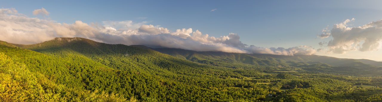 Panorama of the Shenandoah Valley during golden hour as seen from Shenandoah National Park with the forest a bright, vibrant green and clouds in the sky Beauty In Nature Cloud - Sky Day Forest Green Color Idyllic, Poetic, Poetical, Tremendous, Atmospheric Landscape Mountain Mountain Range National Park Nature No People Nobody Outdoor Outdoors Panoramic Scenics Shenandoah National Park Sky Spring Sunlight Tranquility Tree USA Virginia