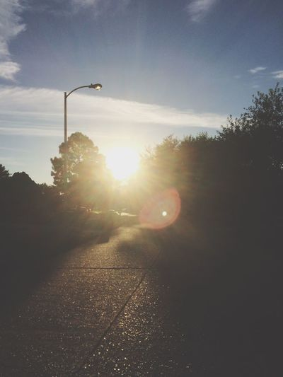 Bright Day This Morning Soaking Up The Sun Enjoying The Sun Excercising Walking Around