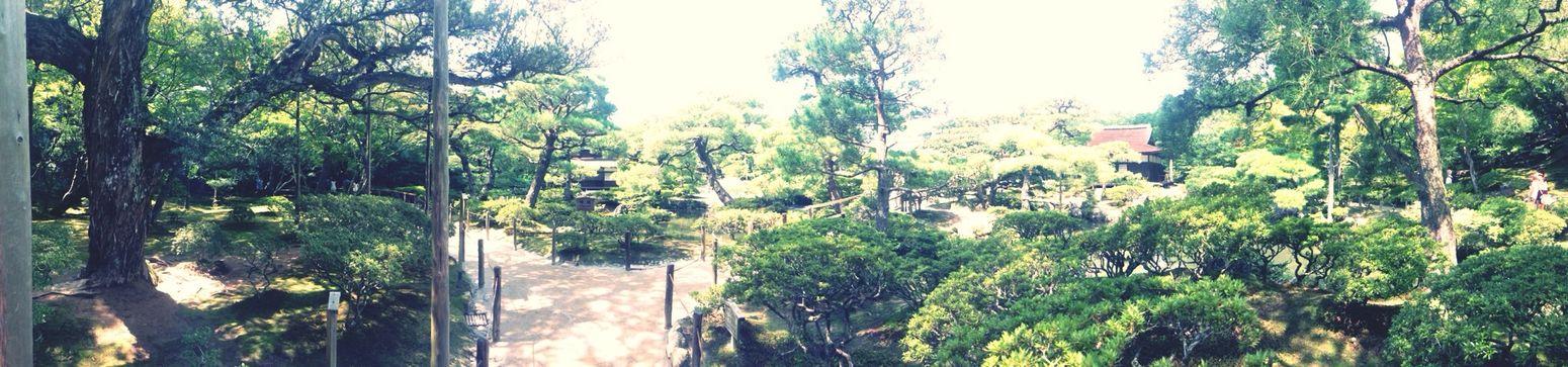 Japanese Garden Panorama