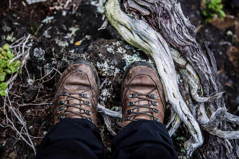 Shoe Low Section Human Leg Human Body Part Standing One Person Shoelace Tree Trunk Lifestyles Outdoors Real People Day Men People Nature Close-up One Man Only Adult EyeEm Ready   EyeEmNewHere