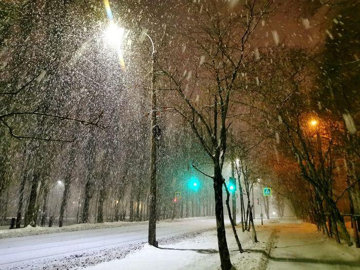 Illuminated street light on road during winter