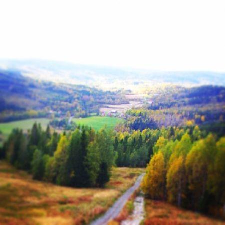 På väg ner från Skuleberget