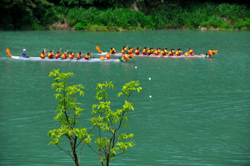 Beauty In Nature Competition Day Lake Large Group Of People Nature Outdoors People Togetherness Tree Water 台灣 山 方向 比賽 湖水 目標 目的 端午節 船 衝刺 速度 龍舟