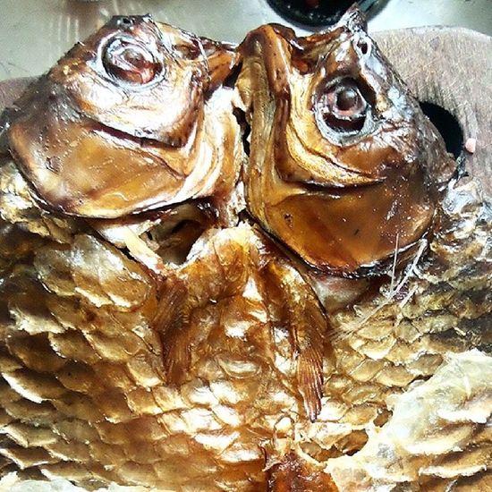 Jelawat asap khas Kutai Barat ini telah dikorbankan kepada kecombrang @acmiid @santhiserad @williamwongso @fajar_arcana @motulz @ayu_mayshita @pokijanacil DiscoverIndonesia Traditionalfood Localdelicacy Localfood Borneo Kaltim Mahakam instafood instanesia instanusantara tropicalfood tribalfood indonesia