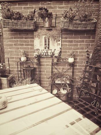 Sepia Sepia_collection Outdoors Sony Dsc Hx60v Taking Photos Photo♡ Nostalgic  Beauty