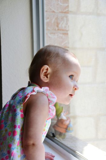 Blue Eyes Babies Looking Out Of The Window