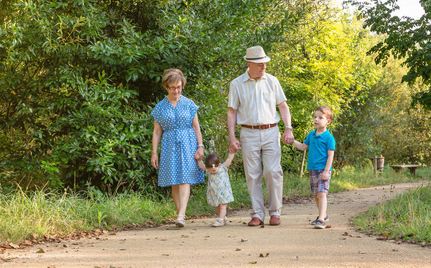 Front view of grandparents and grandchildren walking on a nature path Horizontal Family Outdoors Nature Togheter Love Affectionate Summer Generations Walking Path Four People Grandparents Grandfather Grandmother Granddaughter Holding Hands Happiness Elderly Mature Couple Old Care Baby Park