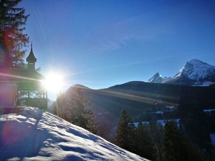 Snow Winter Lens Flare Mountain Pinaceae Cold Temperature Tree Sunlight Nature Forest Pine Tree Landscape Mountain Range Sun Sky Beauty In Nature Scenics Outdoors Blue