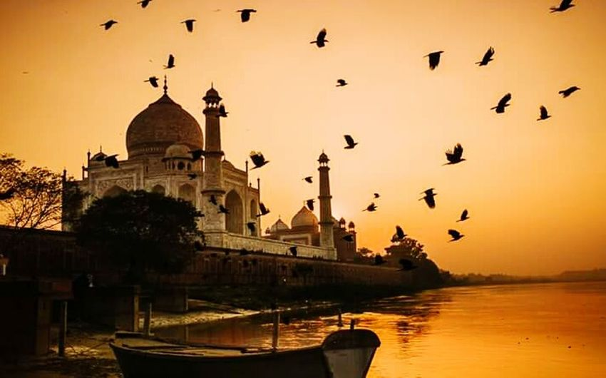 Taj Mahal Taking Picture Shooting Sunset Eeyem Travel Eym Em Best Edits Taking Photos Scenery Shot First Eyeem Photo Welcome To My World Enjoying Life EyeEm Gallery Artistic Expression Scenery Shots Coucherdesoleil Tajmahal India My Life Trip Photos Clouds And Sky India_clicks Indiapictures Peace And Tranquility Beautiful Colors Tranquil Scene Hi World ! Sunset_collection