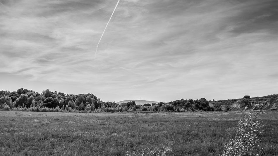 B&w Beauty In Nature Black And White Blackandwhite Clouds Day Donnersberg Field Geopark Horizon Landscape Landscapes Mountain Nature No People Outdoors Rhineland-palatinate Rural Scene Scenics Sky Tree Trees