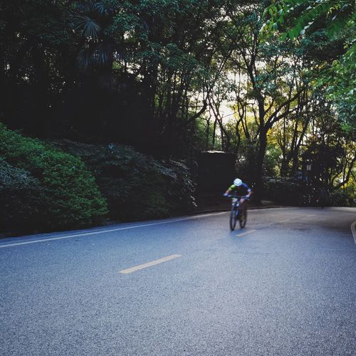 One Person Road Outdoors Tree Nature One Man Only Full Length Landscape Travel Changsha, Hunan Sport Bicycling FUJIFILM X-T10 Speed Bicycle