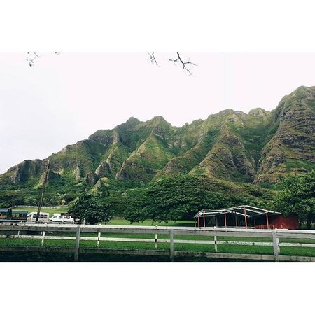 Til we meet again. Ahuihou Koolaus Kualoa Kualoaranch Kaneohe Oahu Hawaiinei Hivibes