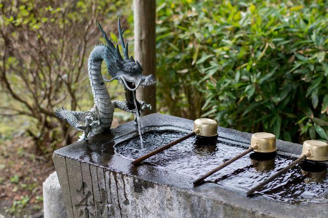 Chozubachi Chozuya Day Dragon Fountain Grass Green Japan Ladle Outdoors Pure Water Shrine Temple Water