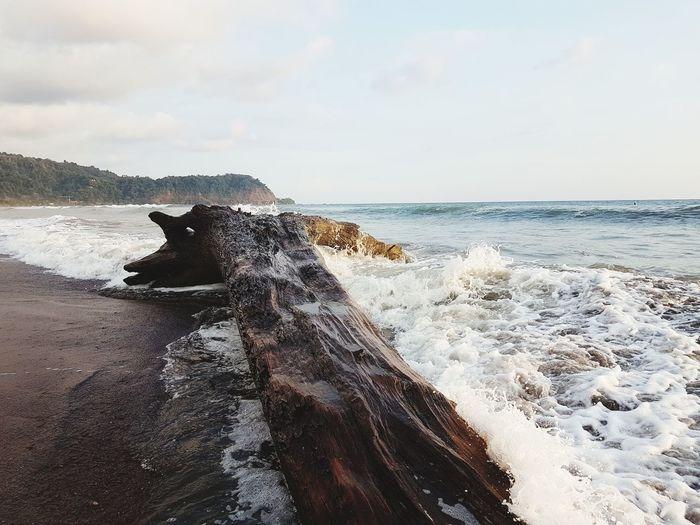Waves splashing on driftwood at beach against sky