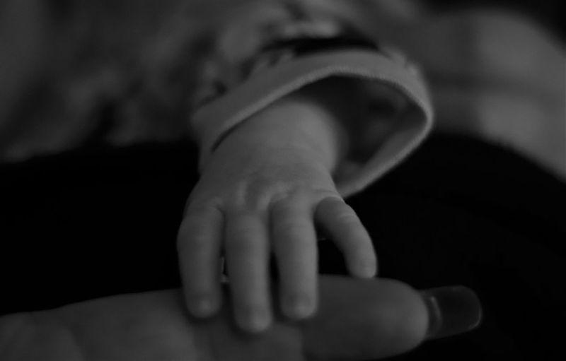 Tiny hand Human