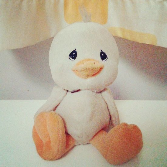 He is a little duck without a name, probably because I was too young to create a name when having him. I guess he is the oldest stuffed animal I still have in my place. Once I thought he is the ugly duckling in the Grimm's fairy tales, since his eyes are like water drops and two feet looks different which are strange for me as a little girl. I was even looking forward to seeing him become a beautiful swan. What a silly girl! :') Stuffedanimal Theuglyduckling Fairytale  Adorable duck silly girl