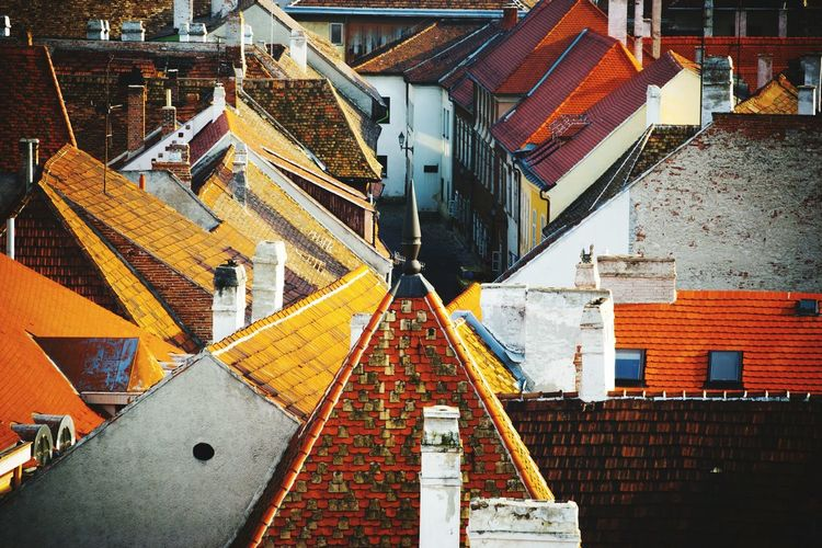 Tiled Roofs Of Town Houses