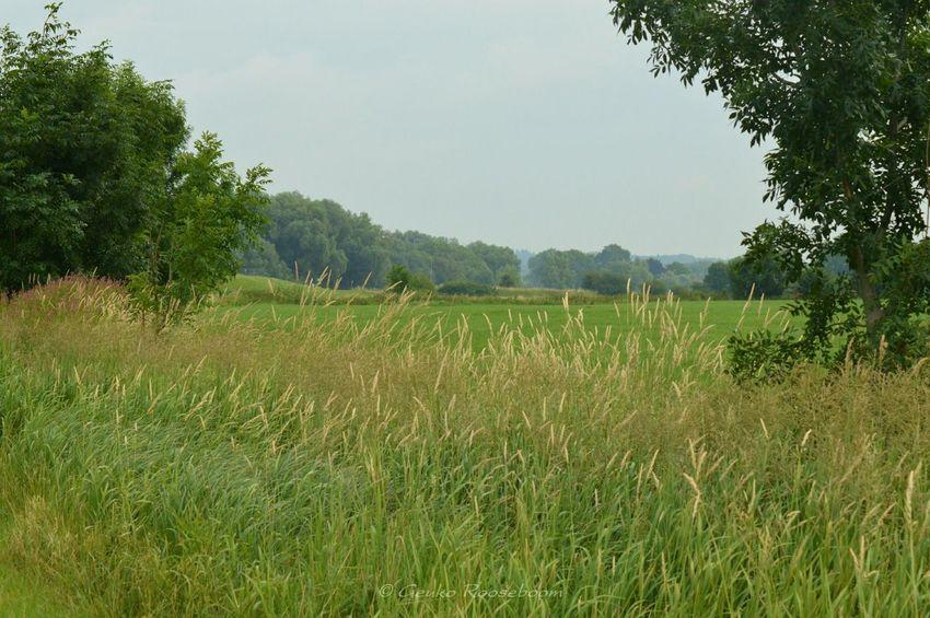 Dutch Landscape Dutch Countyside Dutch
