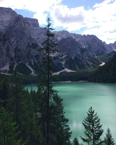 Lago di Braies Italy Ltalia Lago Di Braies Braies Lake Tree Mountain Nature Lake Day Pinaceae Cloud - Sky Sky Forest No People Outdoors Tranquility Beauty In Nature