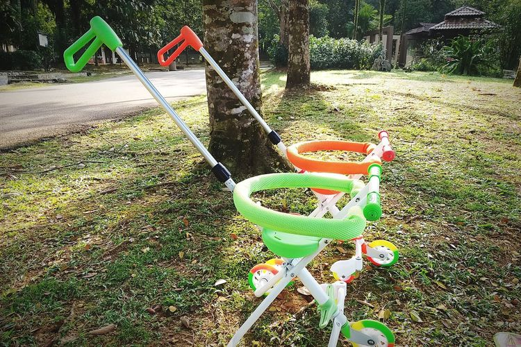 stroller EyeEmNewHere Spraying Front Or Back Yard Grass Green Color Petal Domestic Garden Plant Life Park - Man Made Space Growing Pollen Blooming Sprinkler Dahlia Cosmos Flower Single Flower Hibiscus Flower Head Topiary Osteospermum Yard Hedge Fragility Stamen Hydrangea Passion Flower In Bloom
