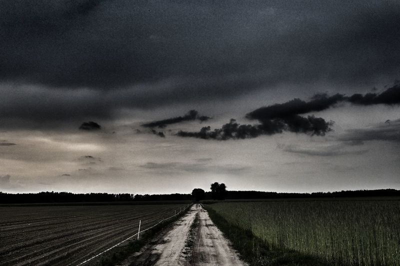 Rural Scene Agriculture Road Field Sky Landscape Cloud - Sky Empty Road Storm Cloud Country Road Dramatic Sky Storm Lightning Forked Lightning Road Marking Diminishing Perspective