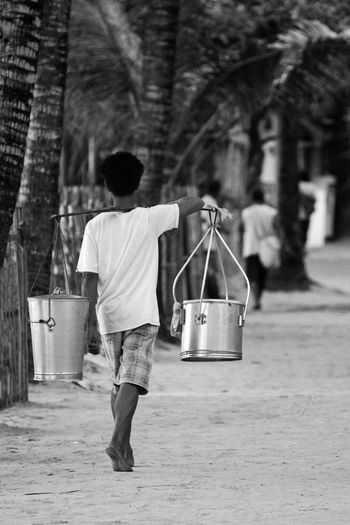 Rear view of carrying buckets on his shoulder while walking by palm trees